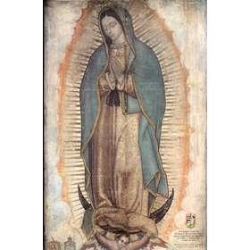 N.D. de Guadalupe