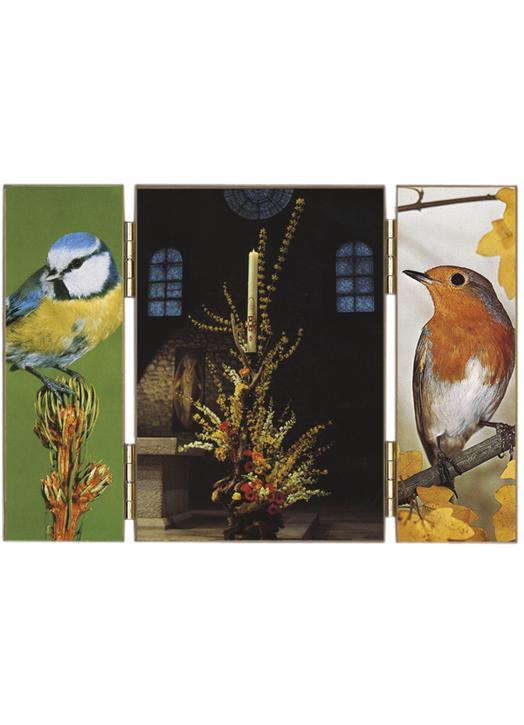 """Pascal Candle : """"regardez les oiseaux du ciel !"""""""