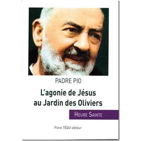 L'agonie de Jésus au Jardin...