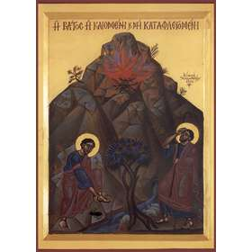 Icon of Moses and the Burning Bush