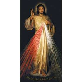 Roll-up  van de ikoon van Jezus Barmhartigheid van Krakau (Image_du_roll-up)