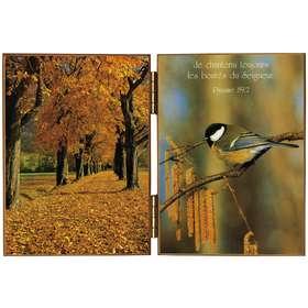 Mésange et couleurs d'automne