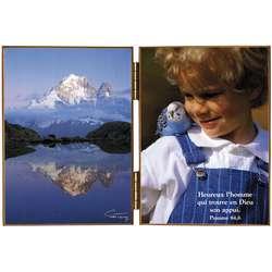 Lac Blanc: mirror of the mounts - Aiguille Verte and les Drus